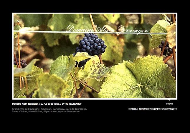 Domaine viticole et vin de Bourgogne, vin de Meursault, AOC MEURSAULT